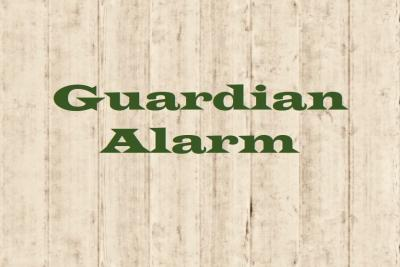 guardian alarm review