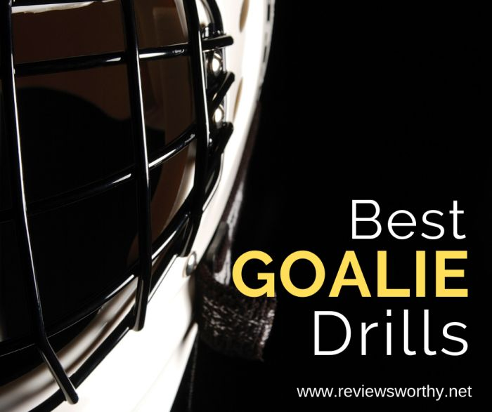 Best Drills & Exercises for Lacrosse Goalies