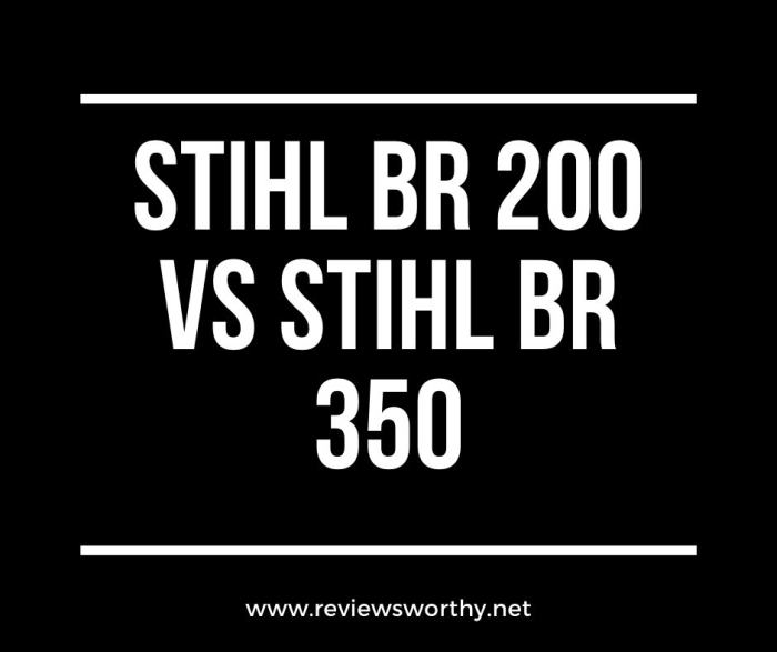Stihl Br 200 Vs Stihl Br 350 Backpack Leaf Blowers